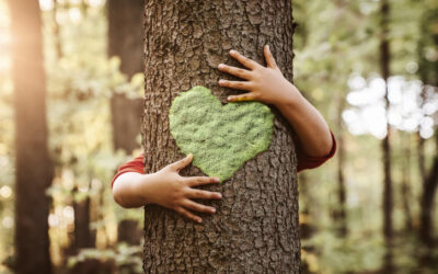 Child hugging tree with heart shape on it
